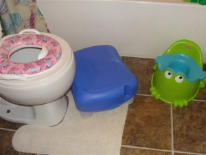 potty seats