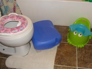 potty seats
