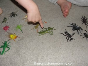kid bug activity