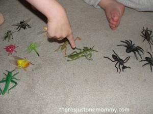 kid bug activity