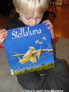Stellaluna book activities
