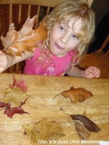preschooler leaf activities