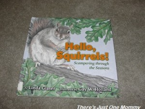 kids squirrel activity