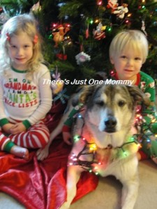"""Of course you HAVE to include the furry child, too! (What you don't see is the big bone I am holding over my head as I tell her to """"stay"""" so I can take the picture.)"""