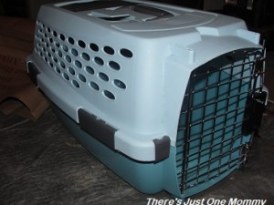 which cat carrier to buy