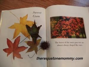 fall sensory bin
