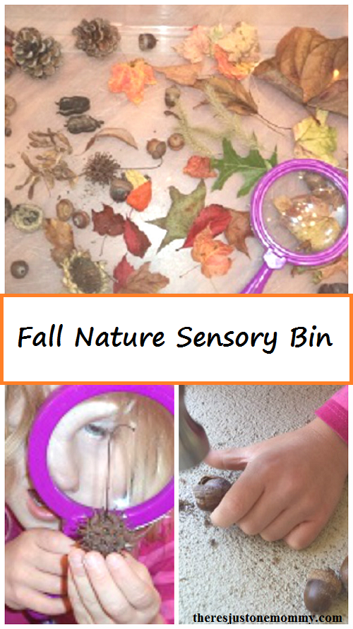 simple fall sensory bin -- all children to explore nature with this fall kids activity