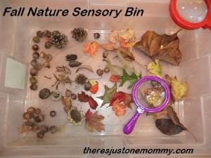 easy fall nature sensory bin