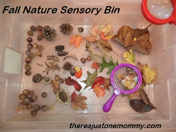 easy fall nature sensory bin