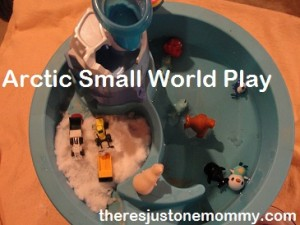 arctic small world play