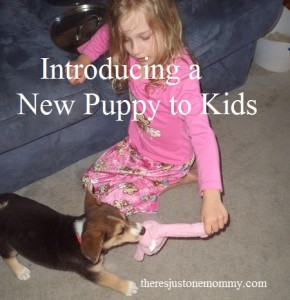 tips for introducing a new puppy to the kids
