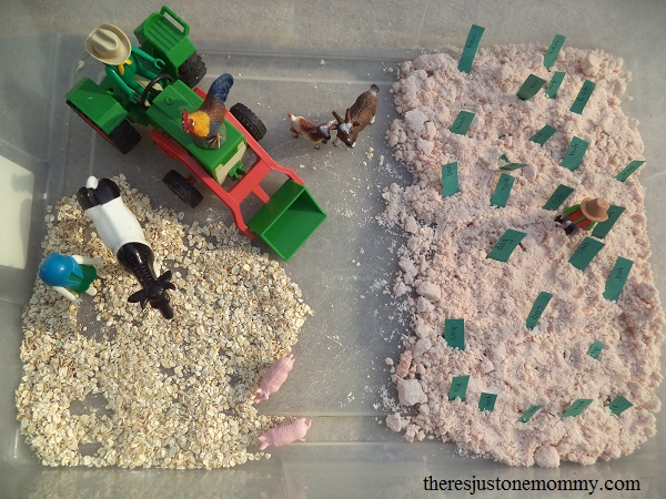 sight word practice at home with a farm sensory bin
