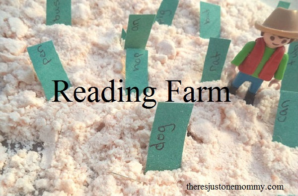 sight word practice at home -- perfect sight word activity for farm unit