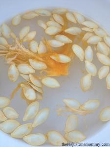pumpkin seeds floating
