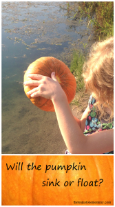 Will the pumpkin sink or float? A simple science experiment for fall