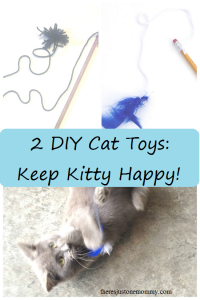 2 DIY Cat Toys the Kids Can Make!