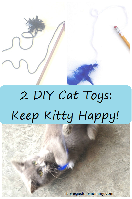 2 simple DIY cat toys you can make with materials you already have