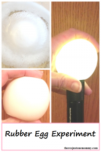 Rubber Egg Experiment: how to make an egg bounce