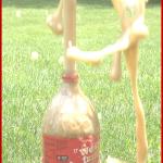 How to Make a Mentos & Soda Pop Geyser