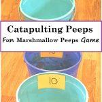 Fun Catapulting Marshmallow Peeps Game
