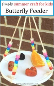 simple homemade butterfly feeder