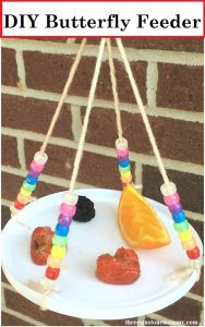 Looking for a nature craft for the kids? This simple DIY Butterfly Feeder is a fun kids craft that will allow them to observe butterflies.