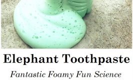 Looking for a fun science experiment for kids? Elephant Toothpaste creates a foamy, fun exothermic reaction that is warm to the touch.
