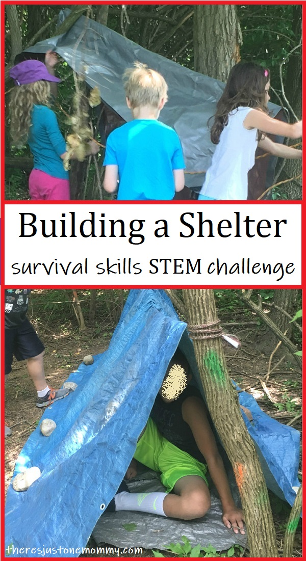 build a shelter STEM challenge