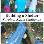 Survival Skills Challenge: Building a Shelter