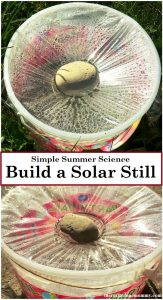Simple Summer Science: Build a Solar Still