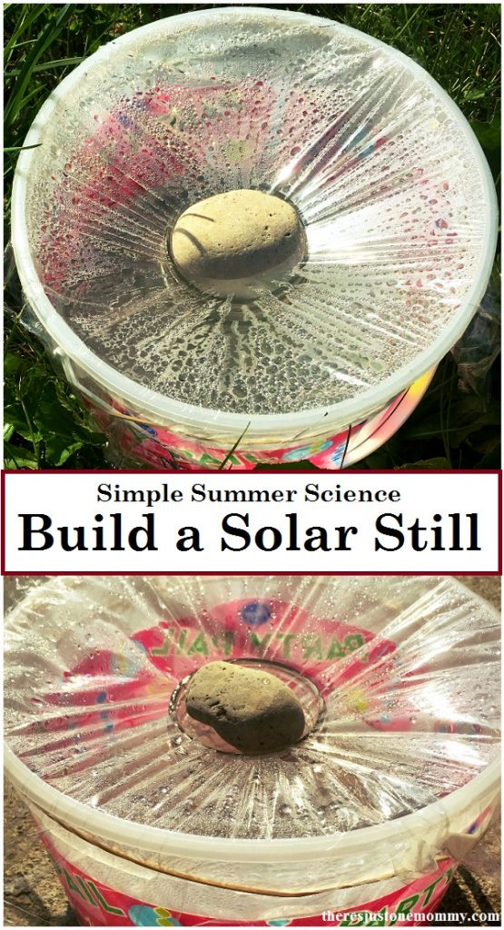 Looking for a simple science experiment to do with the kids? Find out how to make a solar still to purify water. survival skills, summer science,