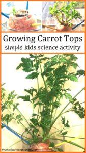 simple kids garden activity
