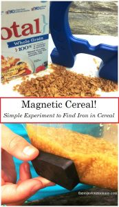 Magnetic Cereal Experiment: how to extract iron from cereal